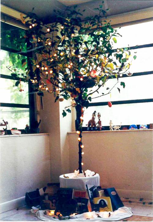 Miami_tree