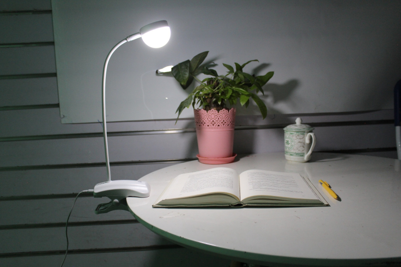Bookspotlight