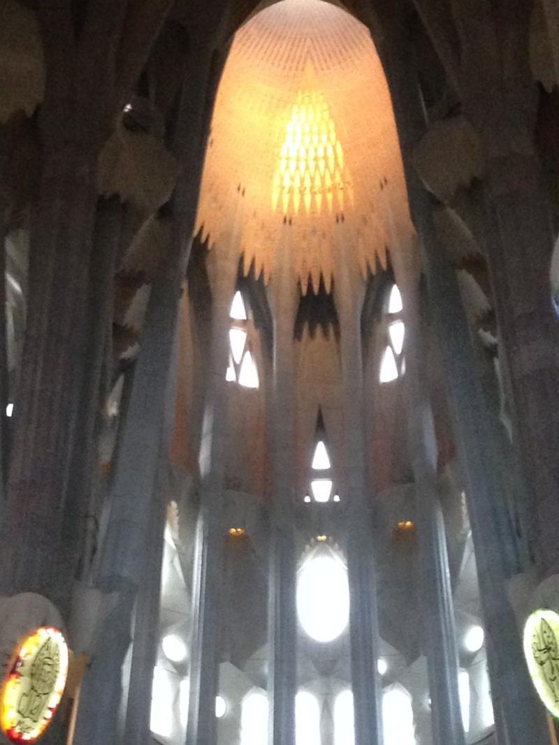 Segrada oculus