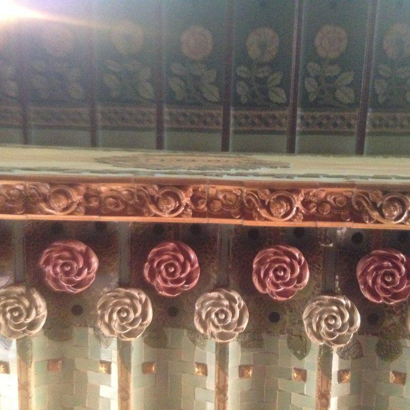 Palau X rosettes