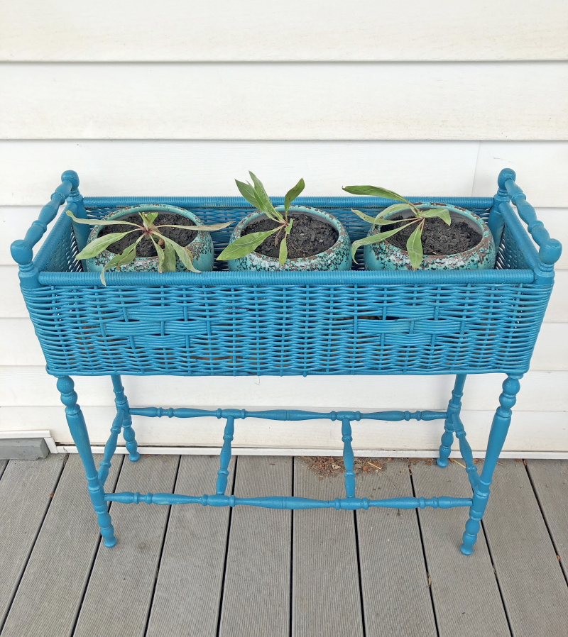 Planter_after