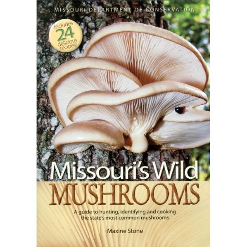Mushrooms Become Less Mysterious - with the Right Field Guide