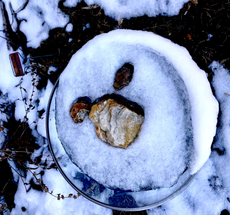 Bird bath in  snow.