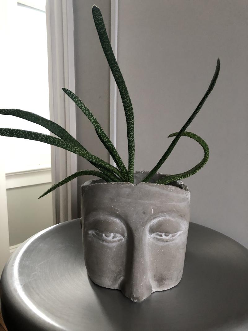 Face_plant