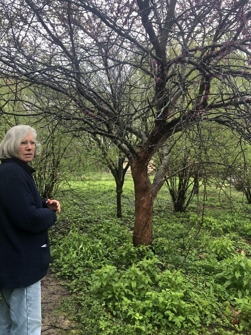 Claire in Garden 2