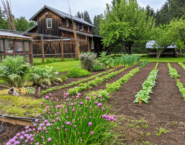 On Whidbey Island with 'Farmer Bob' and His Inspiration Garden