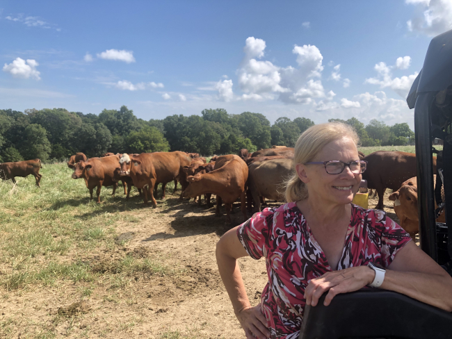 This Is What Environmental Stewardship Looks Like When You're Farming: Eckenfels Farms
