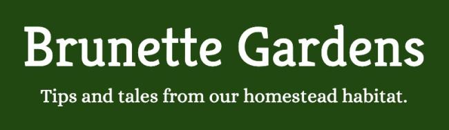 Introducing... Brunette Gardens!
